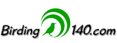 Birding140