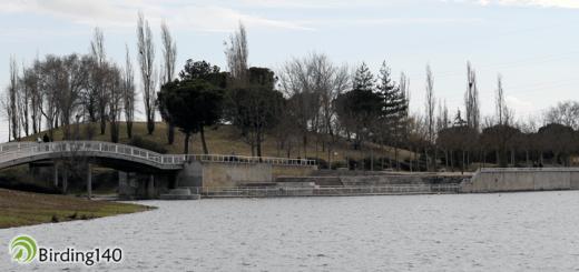 Lake of Mari Pascuala, Madrid