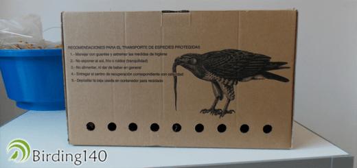 Injured bird box
