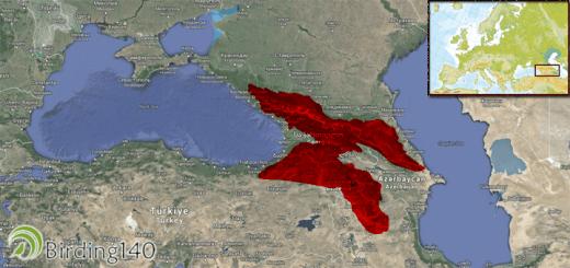 The European Endemic Bird Area (EBA)