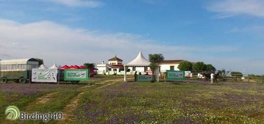 Doñana Birdfair 2015